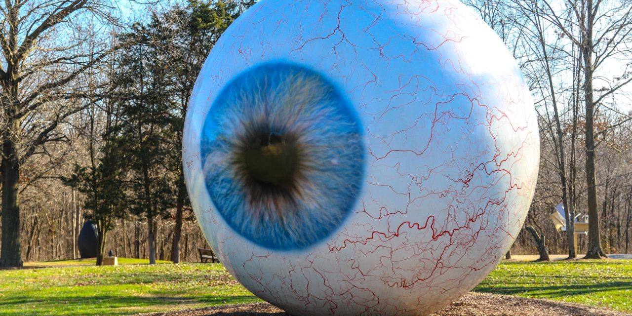 A Look Inside St. Louis' Laumeier Sculpture Park